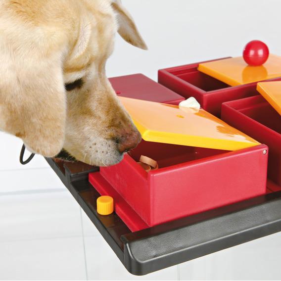 Логические игрушки для собак